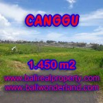 Outstanding Property in Bali for sale, land in Canggu for sale – TJCG137