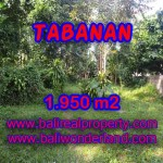 Outstanding Property for sale in Bali, land for sale in Tabanan Bali – TJTB130