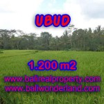 Property in Bali for sale, Astonishing land for sale in Ubud Bali – TJUB400
