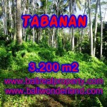 Land for sale in Bali, spectacular view in Tabanan Bali – TJTB120