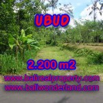 Excellent Property for sale in Bali, land for sale in Ubud Bali – TJUB408