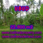 Spectacular Property for sale in Bali, land for sale in Ubud Bali – TJUB409