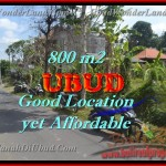Land in Ubud for sale, Stunning view in Ubud Center Bali – TJUB426