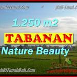 Magnificent Property for sale in Bali, land for sale in Tabanan Bali – TJTB148