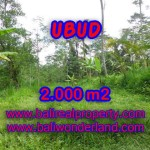 Spectacular Property in Bali, land for sale in Ubud Tegalalang – TJUB406
