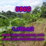 Exotic Property for sale in Bali, LAND FOR SALE IN UBUD Bali – TJUB407