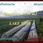 Affordable LAND FOR SALE IN Tabanan Bedugul BALI TJTB178
