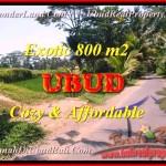 Affordable 800 m2 LAND FOR SALE IN UBUD TJUB457