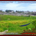 Affordable CANGGU 1.450 m2 LAND FOR SALE TJCG137