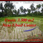 Beautiful PROPERTY LAND FOR SALE IN UBUD TJUB477