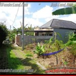 Magnificent PROPERTY 312 m2 LAND FOR SALE IN CANGGU BALI TJCG145