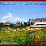 Magnificent PROPERTY 930 m2 LAND FOR SALE IN CANGGU BALI TJCG146