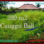 Magnificent LAND FOR SALE IN Canggu Pererenan BALI TJCG190