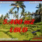 Magnificent PROPERTY Ubud Tegalalang 5,400 m2 LAND FOR SALE TJUB550