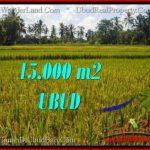 FOR SALE Affordable LAND IN Ubud Tegalalang BALI TJUB551