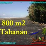 Affordable PROPERTY 800 m2 LAND SALE IN TABANAN BALI TJTB260