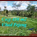 Magnificent PROPERTY 450 m2 LAND IN Ubud Pejeng FOR SALE TJUB535