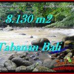 Affordable 8,130 m2 LAND FOR SALE IN TABANAN BALI TJTB285