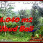 Affordable 4,040 m2 LAND FOR SALE IN UBUD BALI TJUB555
