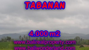 Land in Bali for sale, Interesting view in Tabanan Bali – TJTB084