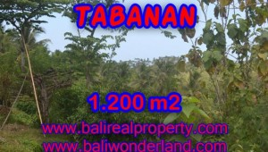 Fantastic Land for sale in Bali, river view in TABANAN BARAT - TJTB072